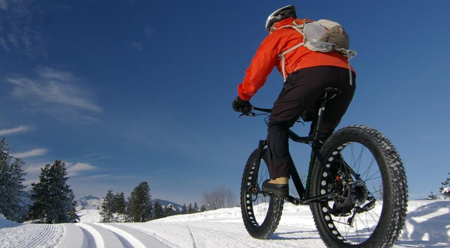 Fat bike au Parc du Massif du Sud